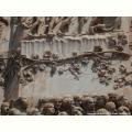 Vite scoplita sui bassorilievi dell facciata del Duomo